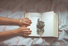 Korolenko II* (WolfKurai*) Tags: canon photo wolfskurai melancholy hands kolorenko ego book natural light hydrangea whim languageofflowers