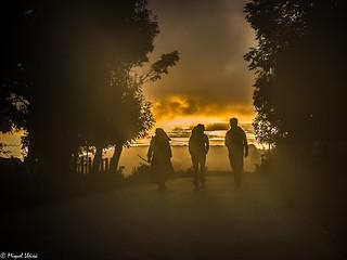 Neix el dia al Camino    -    Born the day on The Way