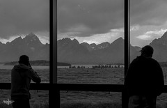 Rainy Views (Marisa Sanders Photography) Tags: tetons grandtetons thegrandtetons nps np gtnp grandtetonnationalpark blackandwhite bw canon canon7d explore outdoors outside gtfoutside gtfoutdoors landscape photography lake