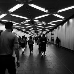 Zigzag away! (jamarcallender@rocketmail.com) Tags: rushhour city walking humans people photography nyc manhattan goinghome trainstation photooftheday tagsforlikes journey urban mood led lights