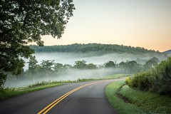 fog rolling through blue ridge parkway farm lands (AgFineArtPhotography.com) Tags: boone farm foggy foliage nobody natural green cloud travel calm view mysterious seasonal nc bright scenery outside light morning hendersonville season flora misty greatsmokymountainsnationalpark weather spruce branches blueridgeparkway scenic coniferous beautiful cows animal stock landscape callowaypeak