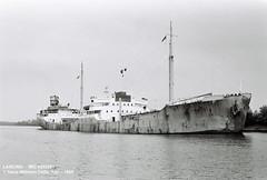 LANCING (5203061) (001-00.00.1968) (HWDKI) Tags: lancing imo 5203061 schiff ship vessel hanswilhelmdelfs delfs kiel nordostseekanal nok kielcanal schlp rendsburg oiltanker tanker tankschiff blythswood