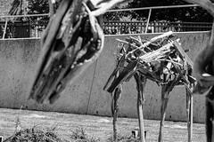 Fisher_Travel_Scupture Garden_ 04 (doesn'tknowhowtosignout) Tags: desmoines sculpturegarden