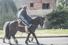 DSC_5217 (neyde zys) Tags: bandadabrigada brigadamilitar desfilefarroupilha gauchos indumentaria prendas tradicao