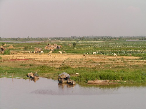 Wetland, Kampong Chhnang, Cambodia. Photo by Eric Baran, 2012.