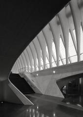 Gare Liège (schromann) Tags: santiago station train concrete belgium gare bahnhof calatrava liege luik tgv beton belgien brut lüttich