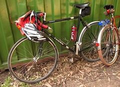 Neat S&S coupled Thorn Audax (ah_blake) Tags: road 6 bike go melbourne through touring gravel cyclocross belgrave grinders lysterfield randonneur cardinia birdsland