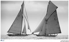 IV Puig Classica (PUIG VELA CLASSICA) Tags: classic sailing tuiga moonbeamiv