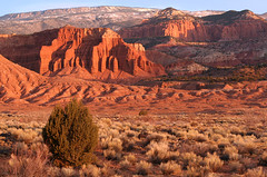 Moenkopi in the Morning (arbyreed) Tags: red rock utah desert formation redrock moenkopiformation arbyreed moenkopimudstone moenkopisiltstone sandstonesunrisedesert sunrisetorrey