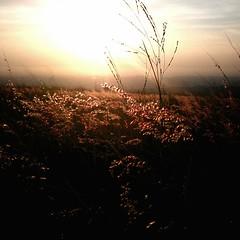 Dadu. Sunset (Mr. ) Tags: taichung