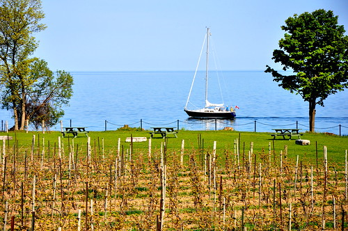 Le Lac Ontario by MMarsolais, on Flickr
