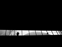 l  l i l  l  l  l (Meljoe San Diego) Tags: windows bw silhouette mall blackwhite ricoh robinsons grd4 rooftopwindows meljoesandiego