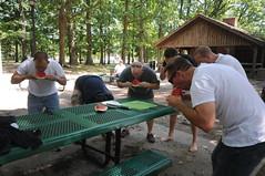 DSC_6765 (maryjanepierce) Tags: picnic networking 2012 cites