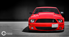 Ford Shelby GT500 (Tareq Abuhajjaj | Photography & Design) Tags: light red sky bw orange moon white black green ford car sport yellow night speed photography lights design photo high nice nikon flickr italia nissan power top wheels fast gear ferrari turbo saudi arabia shelby manual carbon fiber rims riyadh v8  2010 supercharged ksa  gt500 070 tareq         d700      foilacar tareqdesigncom tareqmoon tareqdesign  abuhajjaj