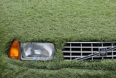 Die Wahrheit liegt auf dem Platz (Scilla sinensis) Tags: grass car lights volvo sweden euro hamburg lawn front sooc miljöbil diewahrheitliegtaufdemplatz umweltauto