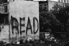 (Blue Spine) Tags: nyc newyorkcity wall read bluespine nikond3100 bluespinephotography bluespineph aguscabaleiro
