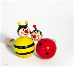 when there is love (_esse_) Tags: wood love bee ape ladybug amore legno bene 100macro coccinella v