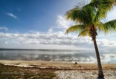 Scenes from Sombrero Beach, Florida (Nikon D7000) (The Shared Experience) Tags: winter sea usa beach water clouds nikon key florida fl fla 2011 sombrerobeach d7000