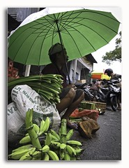 zenubud bali 5411DXP (Zenubud) Tags: bali art canon indonesia handicraft asia handmade asie import tiff indonesie ubud export handwerk g12 villaforrentbali zenubud villaalouerbali locationvillabaliubud