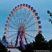 sterrennieuws tomorrowland2012dag2boom