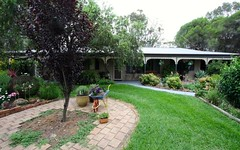 Essex Stud, 1995 Dunville Loop, Rylstone NSW
