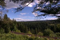 Wanderung durch die Rötenbachschlucht