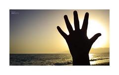 Playeando... (ngel mateo) Tags: ngelmartnmateo ngelmateo balerma elejido almera andaluca espaa atardecer ocaso sol mano contraluz dedos spain andalusia backlit sunset sun sundown hand fingers