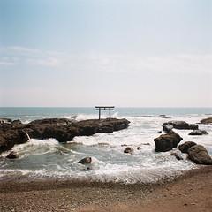R1-23 -  (redefined0307) Tags:    shrine ibaraki landscape zenzabronicas2 zenzabronica bronicas2 mediumformat film filmphotography kodakportra160 portra160 japan