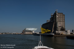 Flandria Havenrondvaart [15] (Werner Wattenbergh) Tags: flandria ferry schip veerboot antwerpen belgie bel