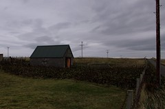 Port Ness (elisecavicchi) Tags: ness isle lewis outer hebrides mainland evening dusk darkening night nightfall dark overcast sky clouds property territory fences fencelines road power telephone lines connected distant agriculture cultivated field empty perspective quiet houseshape