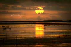 Amanecer Delta de l'Ebre (Raelser (Ramiro)) Tags: sol delta del ebro brillo dia nublado mar amanecer nubes lluvia redes pesca