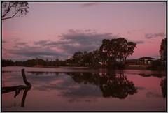 River Reflections (florahaggis) Tags: wimmerariver horsham victoria australia pc3400 cloudsstormssunsetssunrises reflections sky colours trees canon