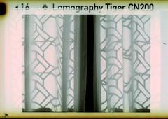 soft shadows (pho-Tony) Tags: 110 kodakminiinstamatics40 lomographytiger copenhagen kodak miniinstamatic s40 germany electronic pocketinstamatic instamatic reomar f5625 25mm f56 lomography tiger colour negative rollei digibase c41