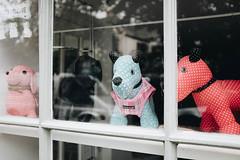 Pet Shop (pottrell) Tags: dog stuffed pet window reflection sewing craft shop store frame x100t fuji