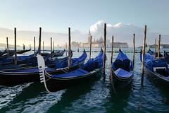 Gondolas in Venice (jp rho) Tags: sunrise gondolas italy venice