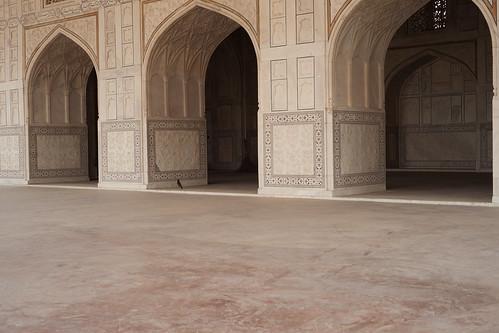 Agra 2016 - Agra Fort - DSC07609.jpg