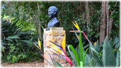 Kirstenbosch Gardens - Cape Town - South Africa (lagergrenjan) Tags: kirstenbosch gardens cape town south africa mandela statue