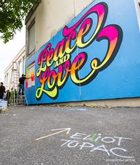 Elliot TUPAC (oncle_john) Tags: streetart walldrawing lyon street art festival onclejohn canon 5d mark3 5d3 mk3 momentsdecapture
