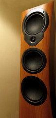 Day # 130. Distorted sound Device (Harleycy3) Tags: distortion tower sound mission speakers cones cases rosewood 300wattsrms