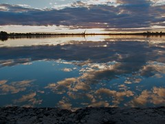 Cherry Lake reflection (Dale Gillard) Tags: sunset reflection water melbourne victoria cherrylake