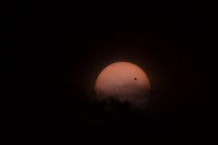 Venus Transiting the Sun - Des Moines, IA
