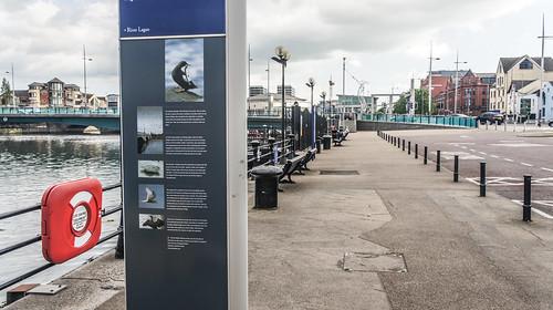 Lagan Weir In Belfast