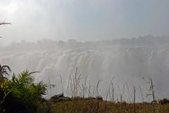 Victoria Falls_2012 05 24_1742 (HBarrison) Tags: hbarrison harveybarrison tauck victoriafalls zimbabwe zambeziriver mosioatunya