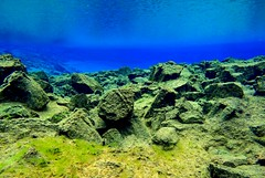 Diving Silfra 8