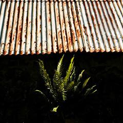 Fern, Glasphein, Skye (James_at_Slack) Tags: fern skye abandoned scotland glendale rusty decayed redroof corrugatedironroof rustyredroof glasphein