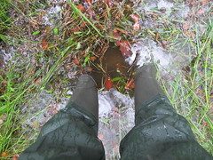 After heavy rainfalls (northseaboy) Tags: rain forest fun mud boots rubber wellington thunderstorm wellies wald regen waders gummistiefel matsch unwetter watstiefel