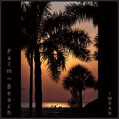 Palm ~ Beach. Far From Palm Beach! - IMRAN™ -- 12,000 Views! (ImranAnwar) Tags: 2012 beach bird boating d300 dusk flickr florida fog framed gulfofmexico history imran imrananwar inspiration landscapes lifestyles marine nature night nikon outdoors palmbeach peaceful red sea seasons sky square sun sunset tranquility travel trees water yellow