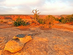 Walking towards the rim of Canyon de Chelly (MarsW) Tags: sunset arizona usa ustrip canyondechelly eveninglight navajotriballand mygearandme navajonationanazasi canyondemuertos kitcrson pronouncedcanyondeshay