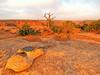 Walking towards the rim of Canyon de Chelly (MarsW) Tags: sunset arizona usa ustrip canyondechelly eveninglight navajotriballand mygearandme navajonationanazasi canyondemuertos kitcrson pronouncedcanyondeshay