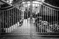 IMG_1441 (pixelpx) Tags: china trip urban bw skyscraper train subway shanghai metro streetphotography metropolis pudong 50mm12 bund jinmaotower travelblog huangpu frenchconcession ndfilter travelphotography waitan 14l 85mm12 14mm28 85l 50l shanghaiwfc shanghaiworldfinancialcentre 10stopfilter canon5dmarkiii gelatindropfilter